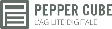 Logo Pepper Cube